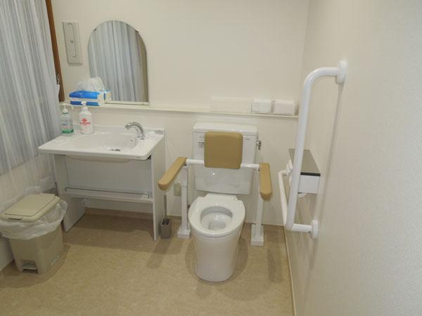 左利き(右麻痺)用トイレ